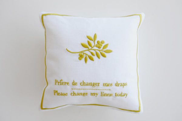 Embroidered pillow, coussin brodé
